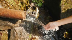 Ung kvinna som samlar nytt rent vatten för naturlig vår i den Slowmotion djungelrainforesten 4K bali indonesia stock video