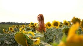 Ung kvinna som stöter ihop med fältet från solrosor, ultrarapid stock video