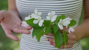 Ung kvinna som tycker om i bakgrunden av det Apple trädet arkivfilmer