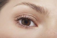 Ung kvinnas öga Arkivfoto