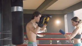 Ung kvinnlig boxareutbildning med den manliga lagledaren på boxningsringen arkivfilmer