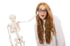 Ung kvinnlig doktor med skelettet som isoleras på Fotografering för Bildbyråer
