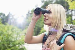 Ung kvinnlig fotvandrare som använder kikare i skog Arkivfoto