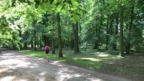 Ung kvinnlig jogger stock video