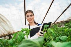 Ung kvinnlig åkerbruk tekniker som kontrollerar växter Arkivbilder