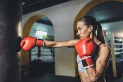 Ung kvinnligboxare Royaltyfri Fotografi