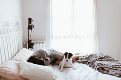 Ung ledsen brunettkvinna som smeker hennes labrador valp som ligger i sovrum fotografering för bildbyråer
