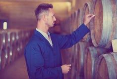 Ung man i laget som tar anmärkningar på vinfabrik Royaltyfria Foton