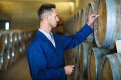 Ung man i laget som tar anmärkningar på vinfabrik Arkivbilder