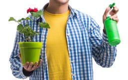 Ung man med blomkrukan som isoleras p? vit arkivbilder