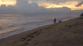 Ung man med körningar för en hund längs stranden av ett tropiskt hav på solnedgången stock video
