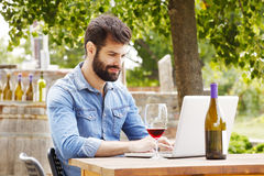 Ung man som arbetar i en vingård Arkivfoton