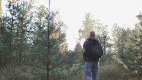 Ung man som går i höstskogen som fotvandrar i skogen lager videofilmer