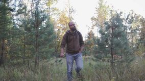Ung man som går i höstskogen som fotvandrar i skogen arkivfilmer