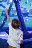 Ung man som pekar en fisk med hans finger Royaltyfri Fotografi