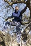 Ung man som rymmer en chainsaw som klipper trädet arkivbilder