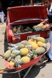 Ung man som tar bort ananors från stammen av bilen för att ta till marknaden, Fiji, 2015 Royaltyfri Bild