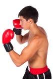Ung manlig kickboxer Arkivfoton
