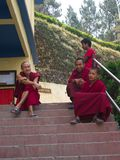 Ung munk i templet, Gangtok stad, Sikkim INDIEN, 16th APRIL Royaltyfria Foton