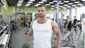 Ung muskulös man som gör övning med hantlar i idrottshallen Stående av den manliga kroppsbyggaren på öva för idrottshall royaltyfri fotografi