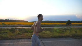 Ung muskulös man som joggar i landsväg på solnedgången Profilen av manlig joggerutbildning för maraton kör utomhus- Idrottsman ne stock video
