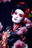 Ung nätt geisha i kimono med sakura och garnering på blac royaltyfri fotografi