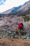 Ung nätt kvinna som bär röda berg för omslagsryggsäckslinga Berget som Trekking, vaggar bakgrund för banalandskapsikten Royaltyfri Fotografi