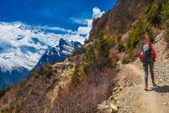 Ung nätt kvinna som bär röda berg för omslagsryggsäckslinga Berget som Trekking, vaggar banan Snölandskapsikt Fotografering för Bildbyråer