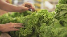 Ung och härlig kvinna i supermarket som köper ny och sund sallad och grönsaker för familj Välja för arm lager videofilmer