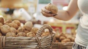 Ung och härlig kvinna i supermarket som köper nya och sunda potatisar och grönsaker för familj Välja för arm arkivfilmer