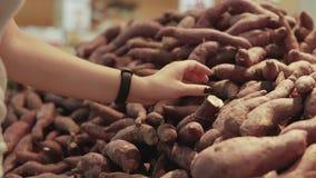 Ung och härlig kvinna i supermarket som köper nya och sunda sötpotatisar och grönsaker för familj Välja för arm arkivfilmer