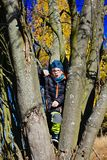 Ung pojke i trädet Royaltyfri Fotografi