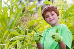 Ung pojke med gröna tummar upp Arkivbild