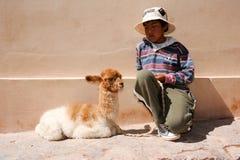 Ung pojke posera med en behandla som ett barnlama på Puramamarca på Argentina Royaltyfri Foto