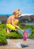 Ung pojke som har gyckel på den tropcial stranden Arkivbild