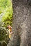 Ung pojke som klättrar det stora trädet royaltyfria foton