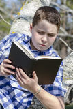 Ung pojke som läser en bok i träna med grunt djup av fältet arkivbild