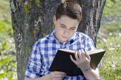 Ung pojke som läser en bok i träna med grunt djup av fältet arkivfoton