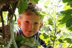 Ung pojke som spelar i träd Fotografering för Bildbyråer