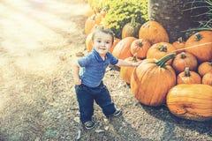 Ung pojke som ut väljer en pumpa Arkivfoton