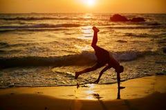 Ung pojkelekcapoeira på stranden Barnet är lyckligt och har gyckel som gör sportar nära havet under solnedgång Mest bra sommarsem arkivbild