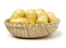 Ung potatis arkivfoto