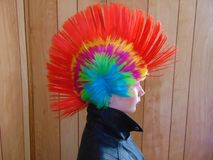 Ung punkare Chick With Rainbow Mohawk arkivfoton