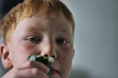 Ung röd haired pojke med gurkan arkivbilder
