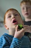 Ung röd haired pojke med gurkan fotografering för bildbyråer