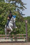 Ung skicklig ryttarinna i svart på den vita hästen Arkivfoton