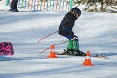 Ung skier Royaltyfri Bild