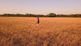 Ung sportig flickalöpare i vetefält stock video