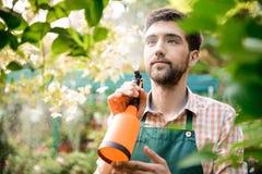 Ung stilig gladlynt trädgårdsmästare som ler, bevattna som tar omsorg av blommor Royaltyfria Bilder