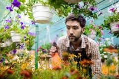 Ung stilig gladlynt trädgårdsmästare som ler, bevattna som tar omsorg av blommor Royaltyfri Fotografi